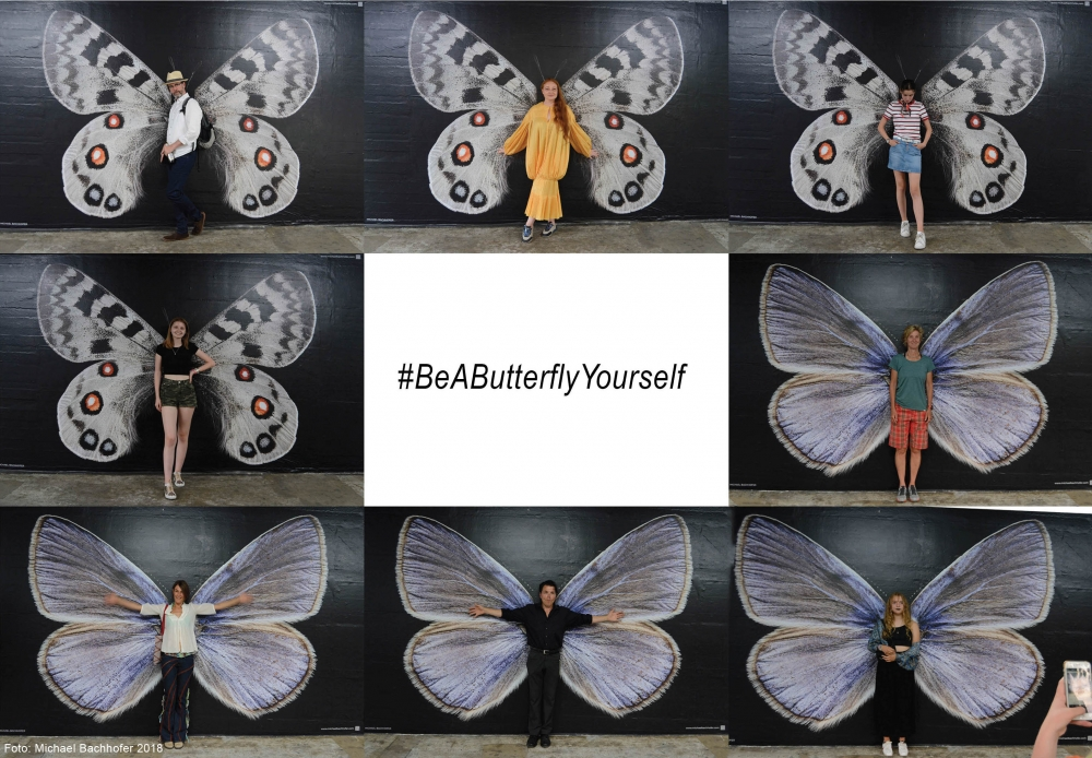"<a href=""http://www.michaelbachhofer.com/photography/beabutterflyyourself/"">#BeAButterflyYourself - transform yourself, transform the world!</a>"
